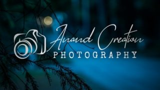 Photography Signature Logo Design Background Image